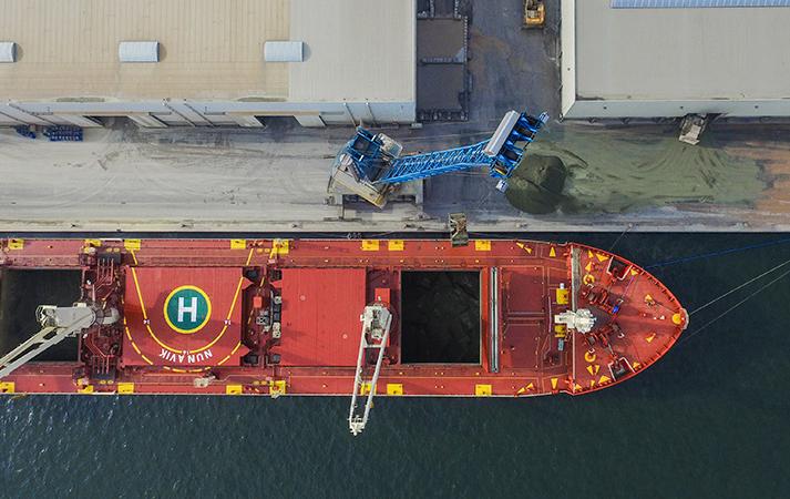 bulkschip