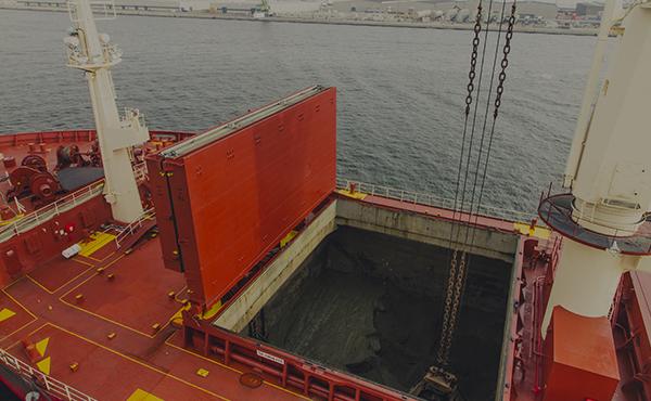 dienst-bulkschepen